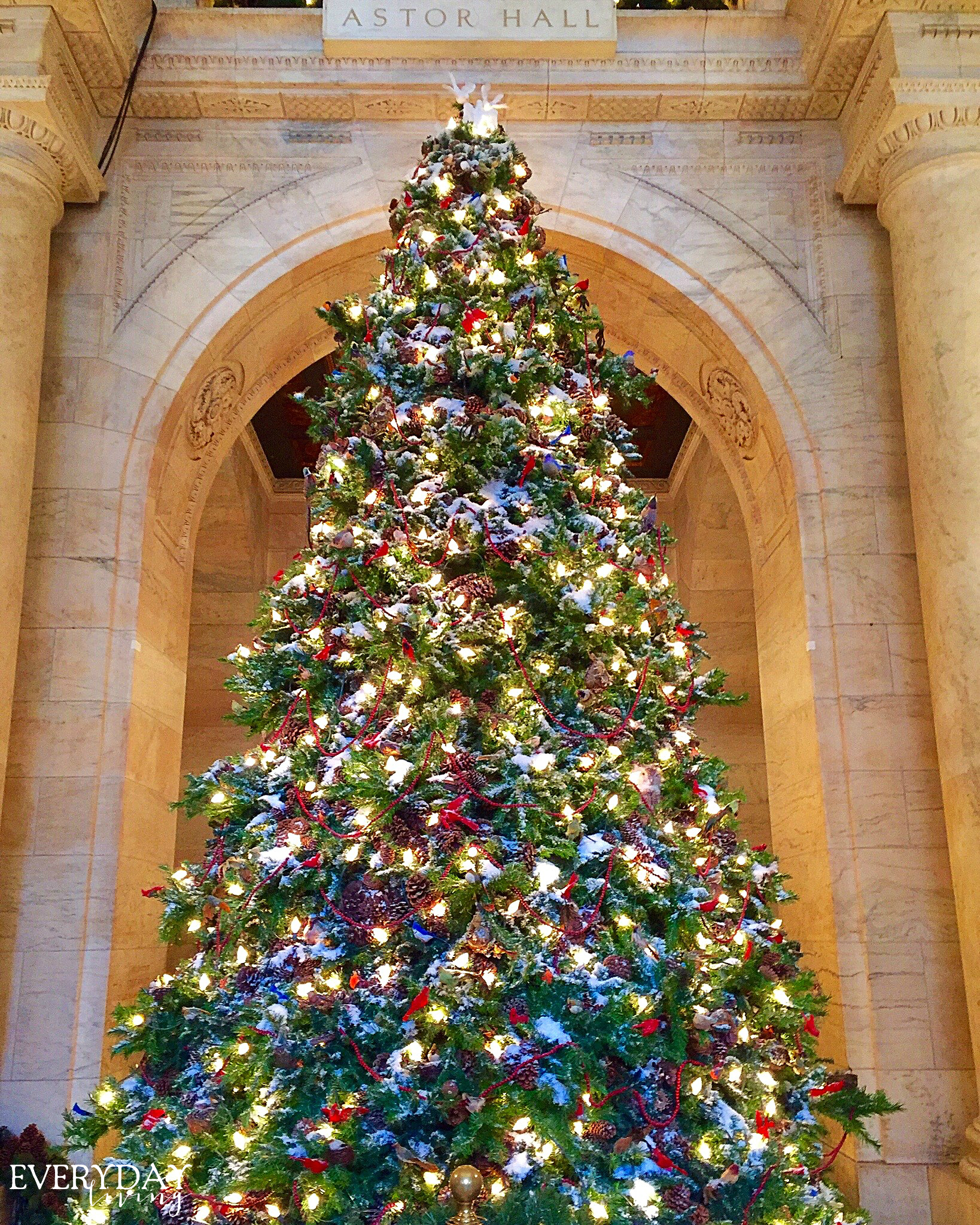 everywhere you look there are gigantic christmas trees this one was in the public library - New York Christmas Time